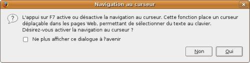 Message Firefox : appuyer sur F7 pour Activer / Désactiver la Navigation au Curseur