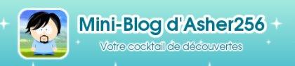Logo du mini-blog d'Asher256